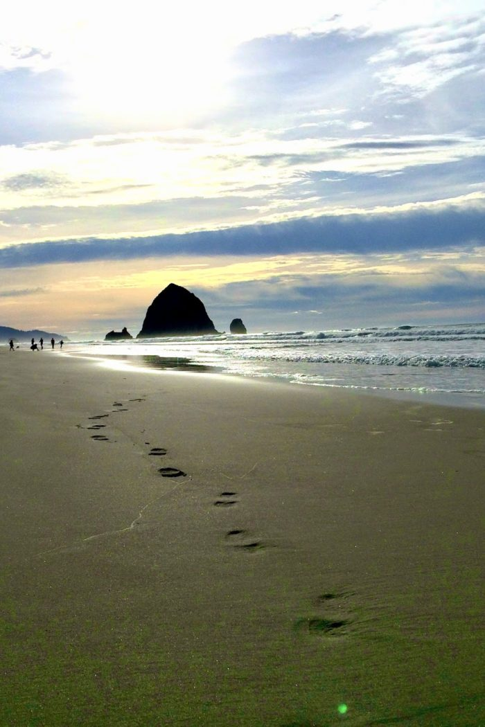 Life's a Beach : Cannon Beach, OR