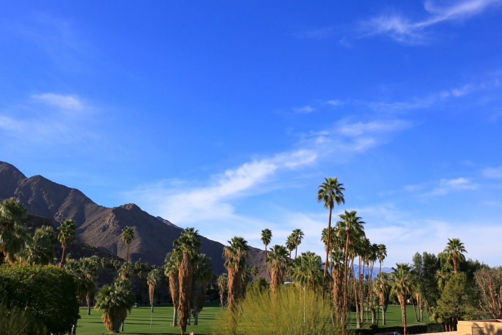 Top Knot Travels : The Perfect Day in Palm Springs
