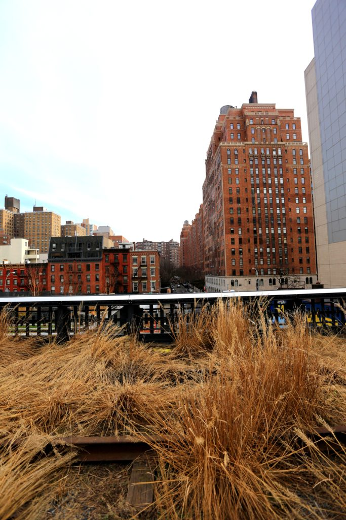 NYC Sights: The Highline & Chelsea Market