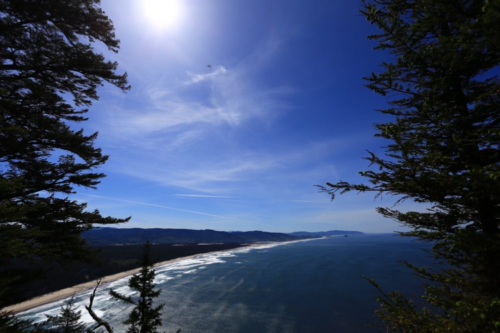 Cape Lookout