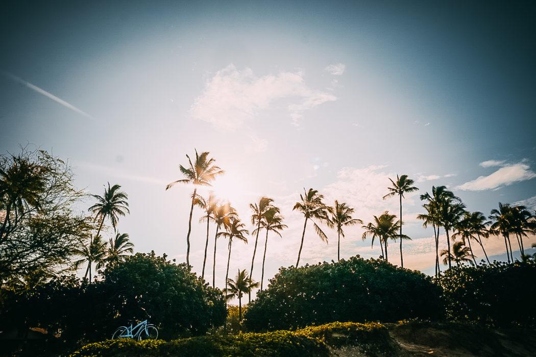 Maui, Hawaii : Travel Guide